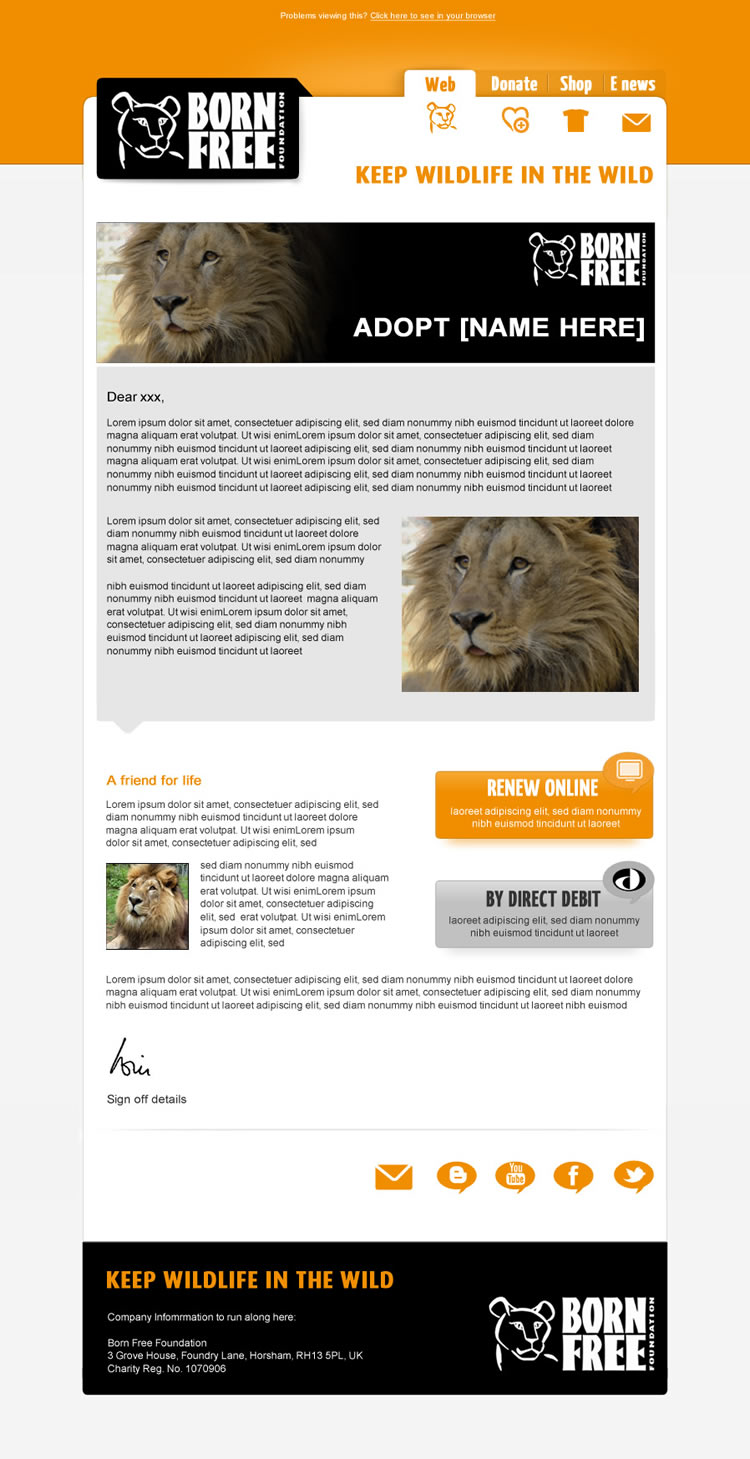email marketing template design .